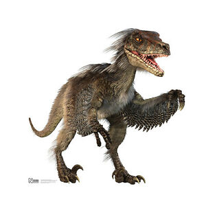 velociraptor dinosaur bigger than real cardboard cutout standee