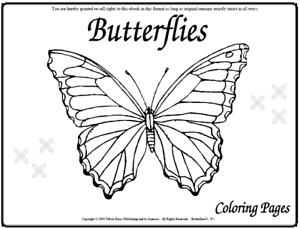 Malbuch 107 Malvorlagen Schmetterlinge Ausmalbilder Als Pdf