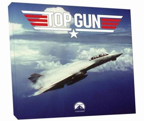 Tableau Peinture Avion de Chasse F-14 Tomcat du Film TOP GUN