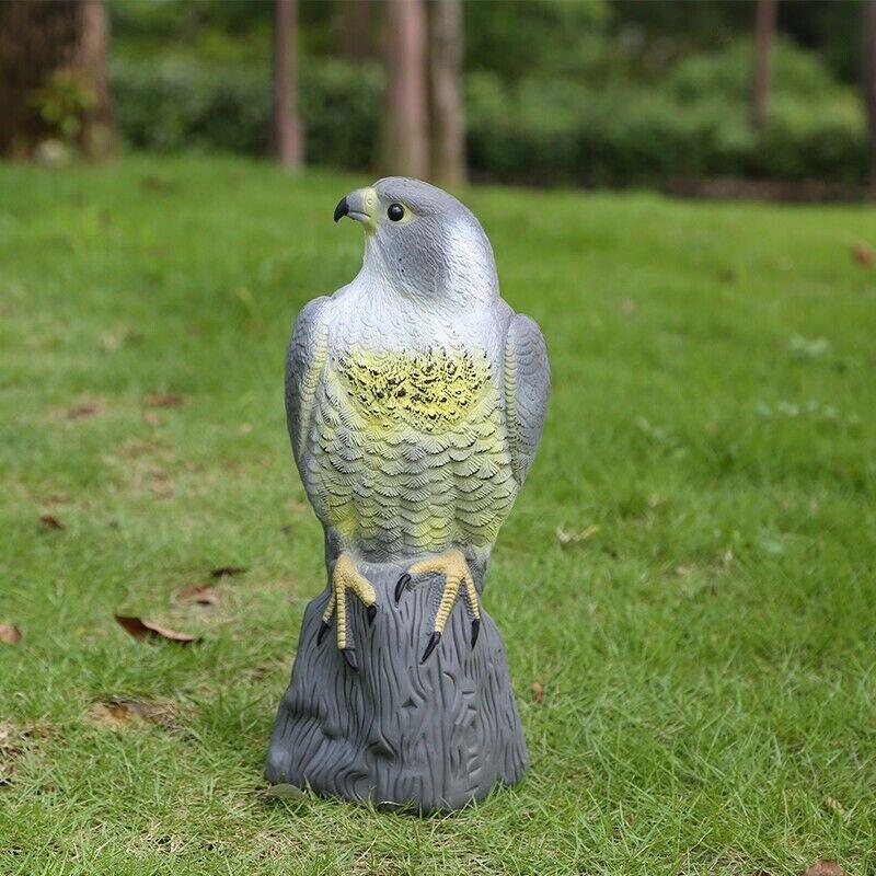 Skræmme fugl