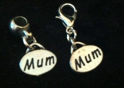 Tibetan Silver Oval Solid Mum Charm Clip on clasp or bail for snake bracelets