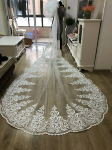 Wedding-Veils-White-Ivory-Lace-Applique-Cathedral-Length-with-Comb-Real-Image