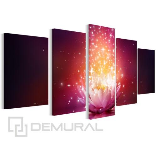 Foto Bild Leinwand Bilder Zauber Lotus Wandbilder Blumen B5D112