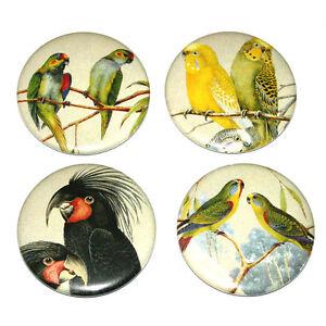 Australian-Birds-Illustrations-Fridge-Magnets-Set-55mm-x-4-Cockatoo-Budgie-Gift