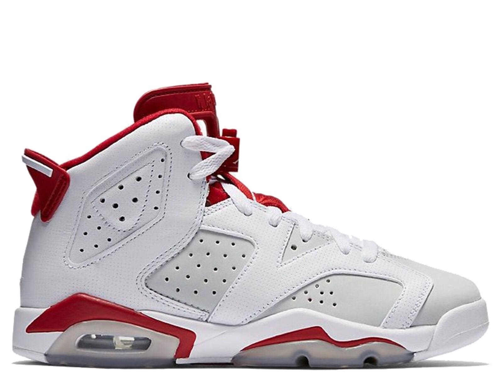 Brand New Air Jordan 6 Retro Alternate Men's Athletic Sneakers [384664 113]