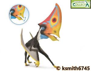 CollectA BIG DIMORPHODON DELUXE plastic toy Prehistoric bird Dinosaur animal NEW