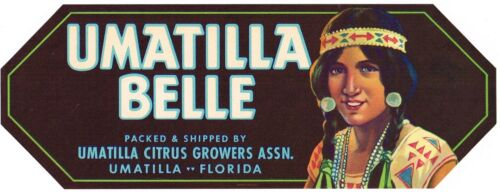 CRATE LABEL VINTAGE FLORIDA C1930 UMATILLA BELLE AMERICAN INDIAN GIRL ORIGINAL