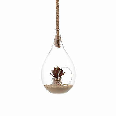 Danya B™ Teardrop Hanging Glass Planter with Rope EK1720