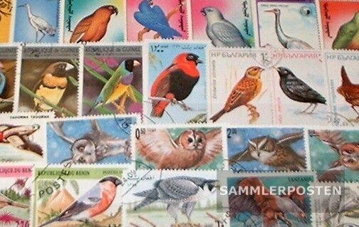motivos 100 diferentes Aves sellos