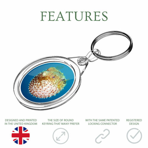 1 X Mignon poisson-globe SOUS-MARIN OCEAN-Porte-clés IR02 Maman Papa Cadeau d/'anniversaire #8938