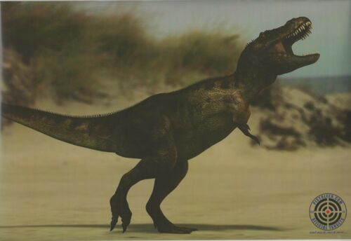 "T-Rex Dinosaur Splattering Target package of 9 12/"" x 18/"" NS11 NS-11"