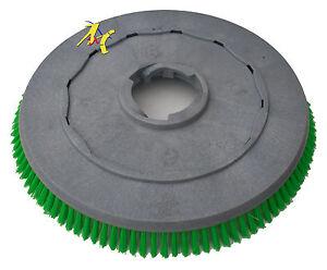 Genuine-Numatic-500mm-MDA-41-Polyscrub-Scrubbing-Brush-For-Floor-Scrubber-606703