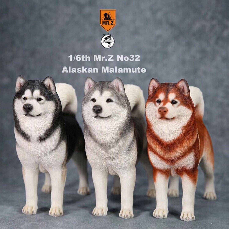 Mr.Z 1 6th Alaskan Malamute Dog Pet Figure Animal Model Collector Toy Decor Gift