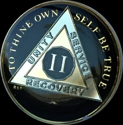 2 Year Classic Black AA Alcoholics Anonymous Medallion Chip Tri-Plate Gold