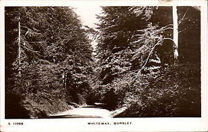 Dursley-Whiteway-by-WHS-Kingsway-S-11068
