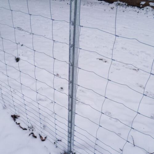 50m Wild recinzione recinzione forestale 100//8//15 Z-PROFILO MONTANTI RECINZIONE