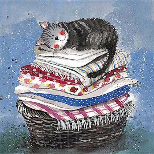 Laundry Basket Funny Cat Greeting Card by Alex Clark Humorous Greetings Cards
