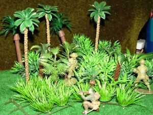 Details about 40 Rainforest Jungle Palm Trees Plants Gres Tropical on