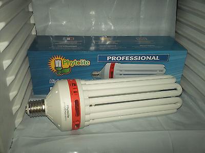 Lampada CFL bulbo bulb 250W white 6400°K blue vegetativa crescita growing indoor