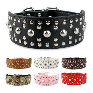 Hundehalsband-Strasshalsband-Lederhalsband-mit-Stumpfnieten-Nietenhalsband-XS-XL