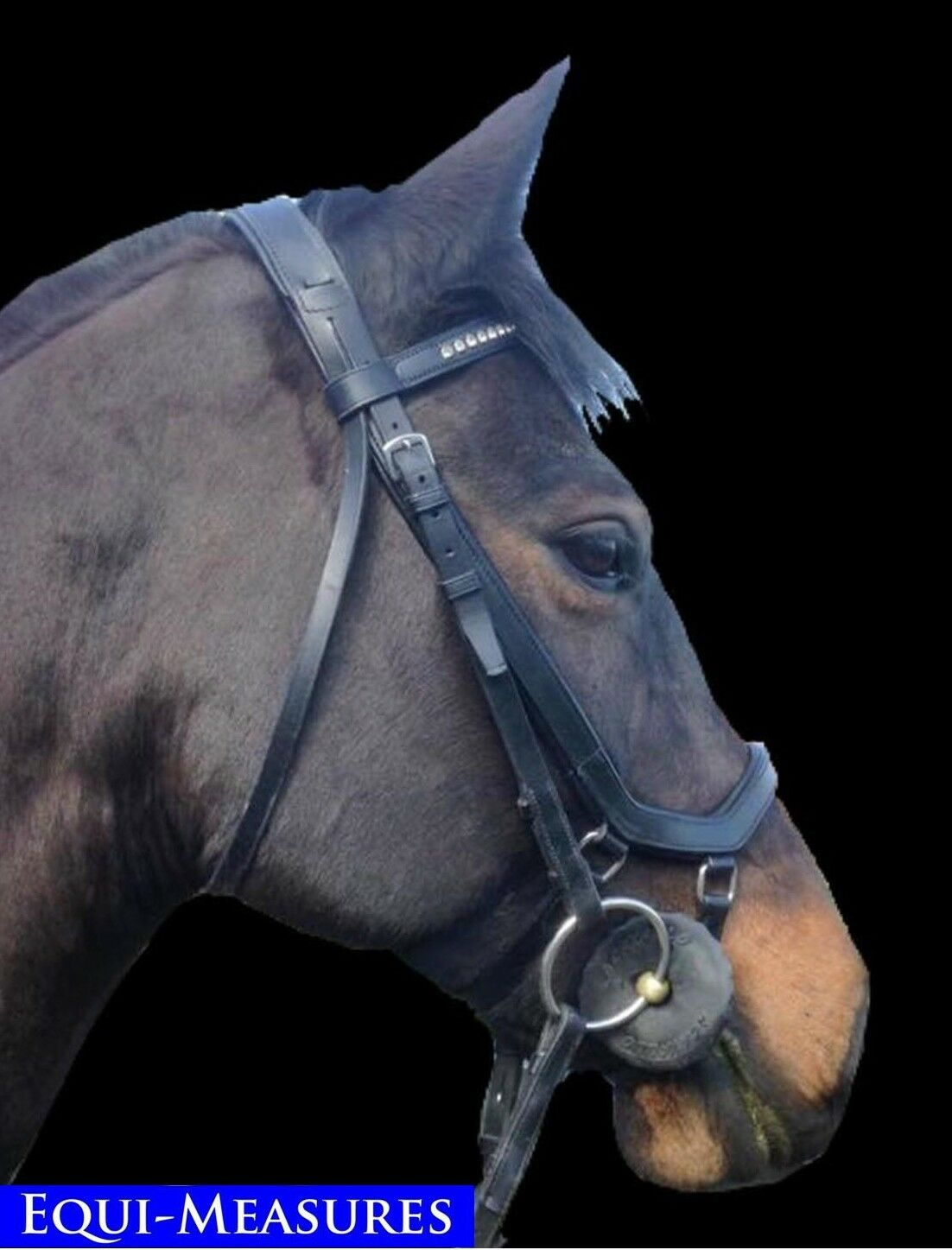 Equi-Measures comfort and control noseband