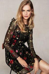 Dress Embroidered 14 Black Floral Next ZqPwx7TnAq
