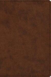 ESV-Pastor-039-s-Bible-TruTone-Brown-Imitation-Leather