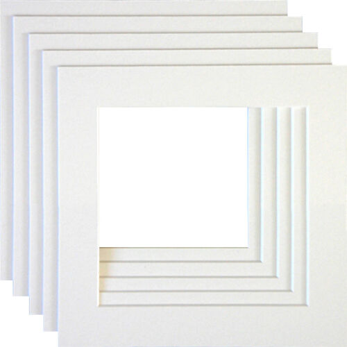 Instagram Conservation White Core Square Picture Photo Mounts Pack of 10
