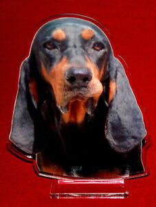 Détails Sur Statuette Photosculptée 10x15 Cm Chien Bruno Du Jura 3 Dog Hund Perro Cane