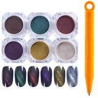 6PCS Magic Nail Cat Eye Magnetic Powder Color-Changing Nail Art UV Gel Dust Kits