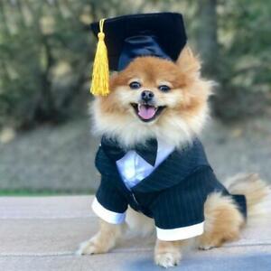 Pet-Dog-Doctor-Hat-Graduation-Cap-Tassel-Hanging-Hat-Puppy-Photobooth-Props