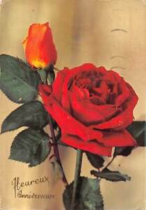 Image Is Loading Heureux Anniversaire Happy Birthday Red Rose Flower Fleur