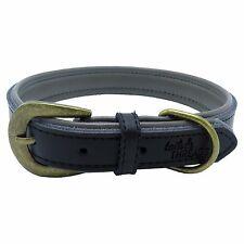 Premium Genuine Leather Soft Padded Dog Collar (Medium)