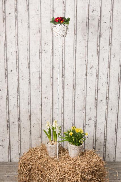 Spina Giardino Fiona Per Paralume Vaso Piante Supporto BAR Bianco Metallo