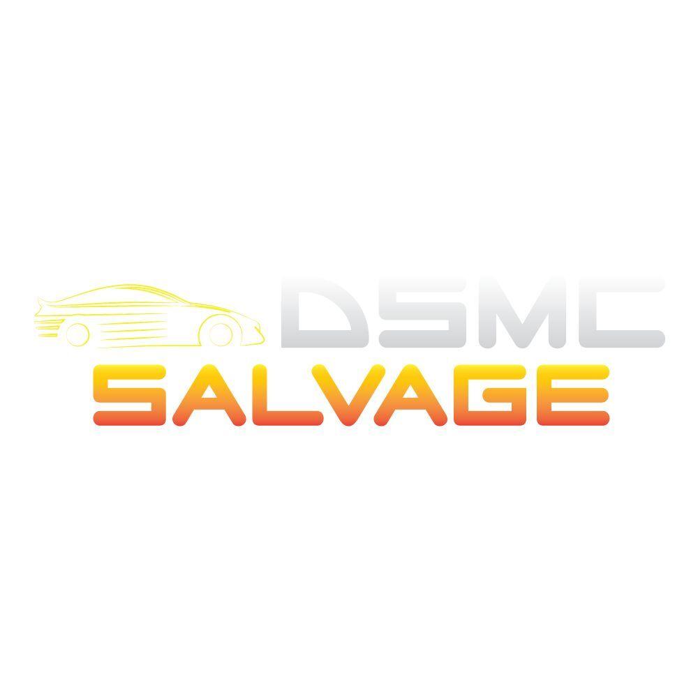 dsmcsalvage