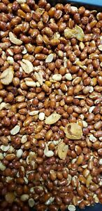 Philippine-style-garlic-peanuts-4-packs-spicy-and-4-packs-non-spicy-12oz-each
