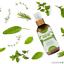 Hair-Growth-Oil-100-Natural-Organic-Herb-Treatment-For-All-Hair-Types-100-amp-200ml thumbnail 5