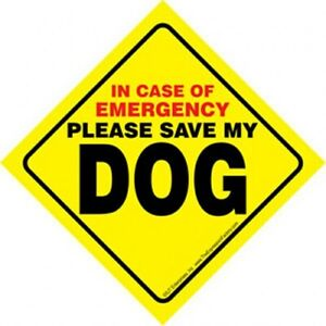 In Case of Emergency Please Save My DOG Bright Yellow Easy Read Window Sign NEW