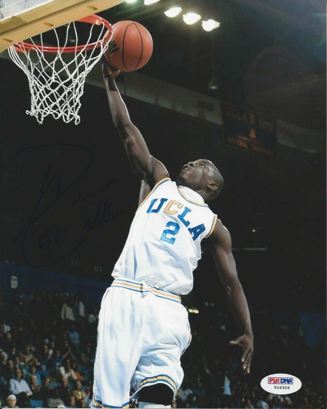 Darren Collison UCLA Bruins Signed 8x10 Photo - PSA/DNA # Y09326