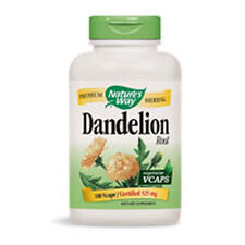 Dandelion Root 100 Caps by Nature's Way