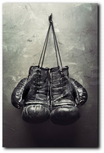 Boxing Gloves Sport Canvas Art Poster Print Home Wall Decor