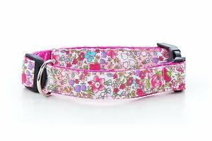 Teddy-Rose-Floral-Flower-Puppy-Dog-Collar-choice-of-sizes