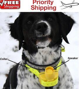 Beeper Collare Cane Da Caccia Addestramento Dog Collar Beep