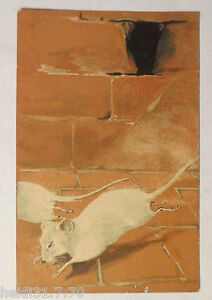 034-Ratten-Keller-Laufen-034-1900-Praegekarte-27847