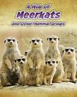 A Mob of Meerkats: And Other Mammal Groups by Louise Spilsbury (Paperback, 2013)
