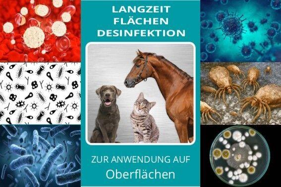Juckreiz beim Pferd   Pilz- & Milbenbefall - Langzeit- Flächendesinfektion   5 L