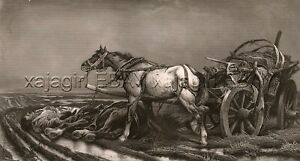 HORSE Abandoned in Field with Dead Master, Huge Folio-Sized 1880s Landseer Print
