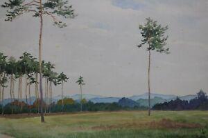 Gustav-Mueller-Aquarell-Foehren-1925