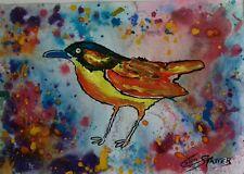 """ORIGINALE Fauna Selvatica Dipinto """"Eden. S. Rainbow Bird"""" FIRMATO Colin statter"""