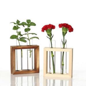 Test Tube Flower Bud Vase Planter Decorative Terrariumin for Office 4 Tube